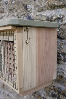 Conservation Solitary Bee Hive