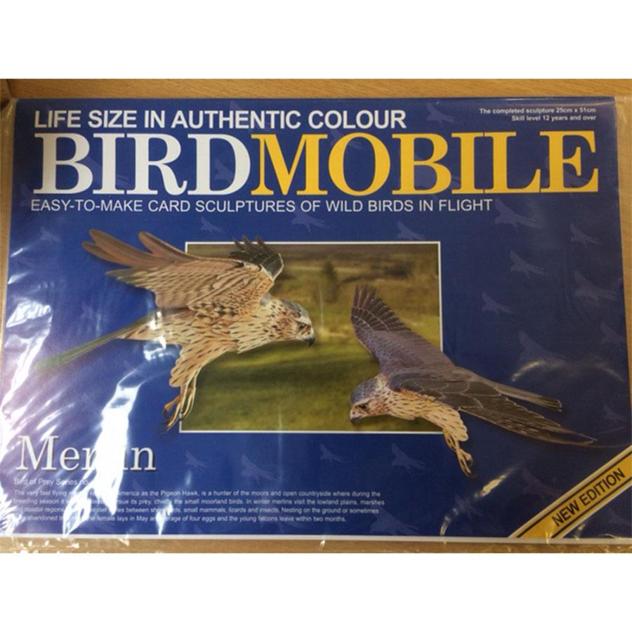 Flying Merlin Model