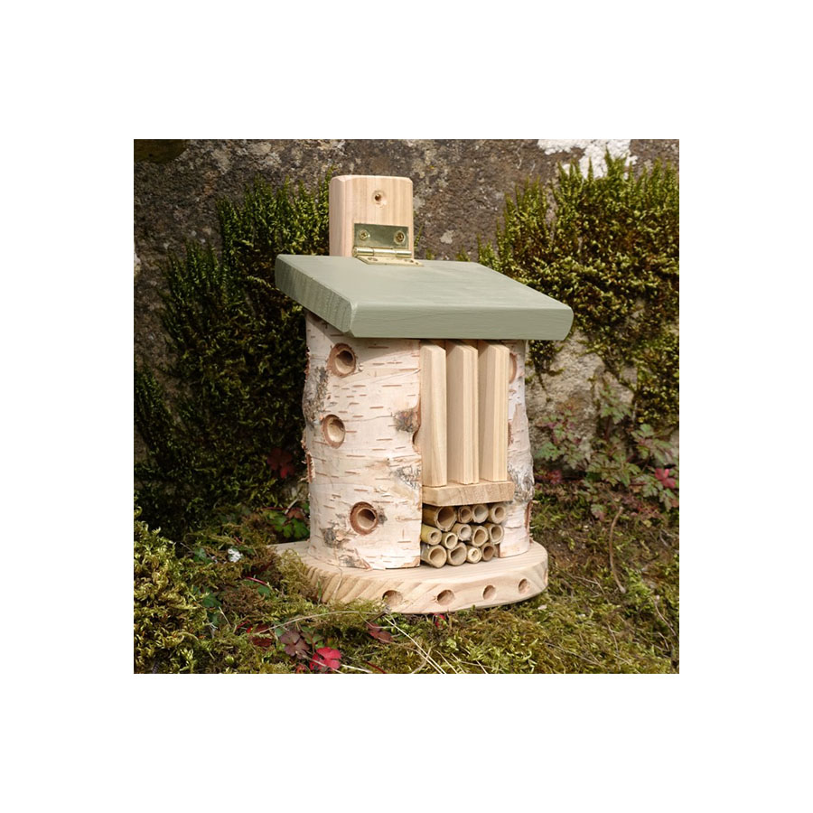 Friendly Bug Barn. Insect Home