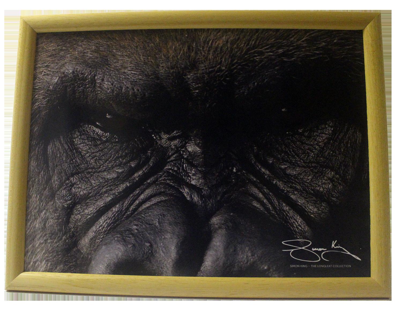 Cushion Tray – Gorilla