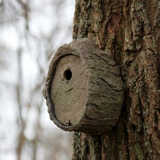 Mimic-Tree-Nest-Box_5-582x582