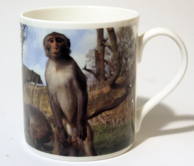 China Mug Monkey