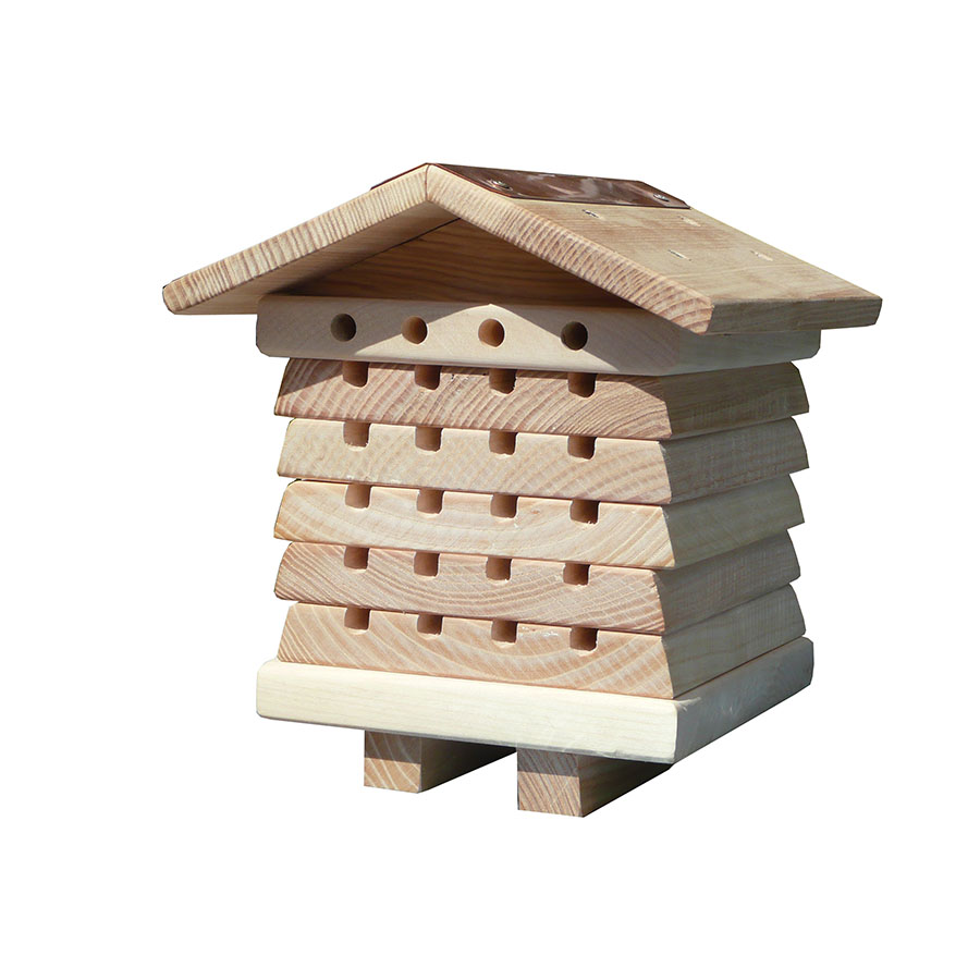 Solitary Bee Hive – Interactive