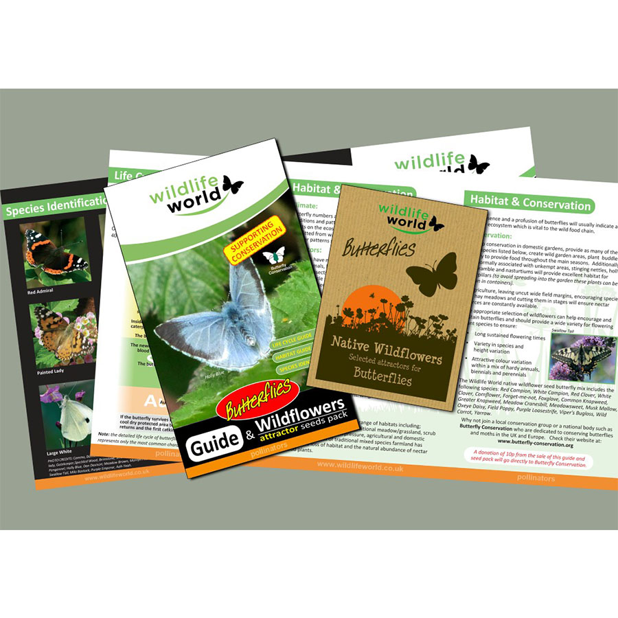 Wildflower Seeds – Butterflies