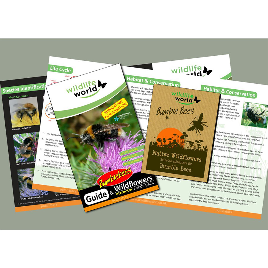 Wildflower Seeds – Bumblebees