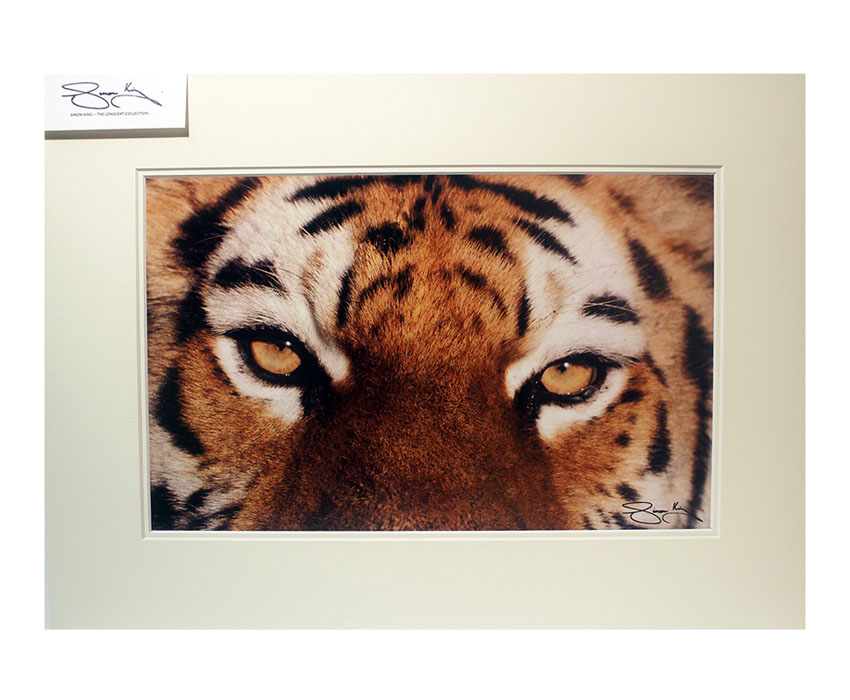 A3 Mounted Prints – Various Available