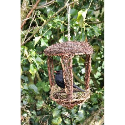 Open Nest Buddy1