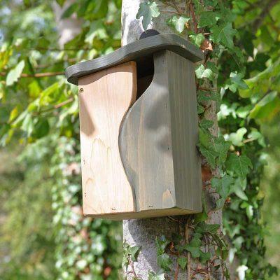Curve nest box