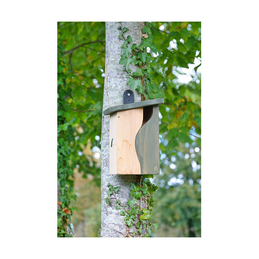 NEW IN – Simon King Curve, Cavity Nest Box