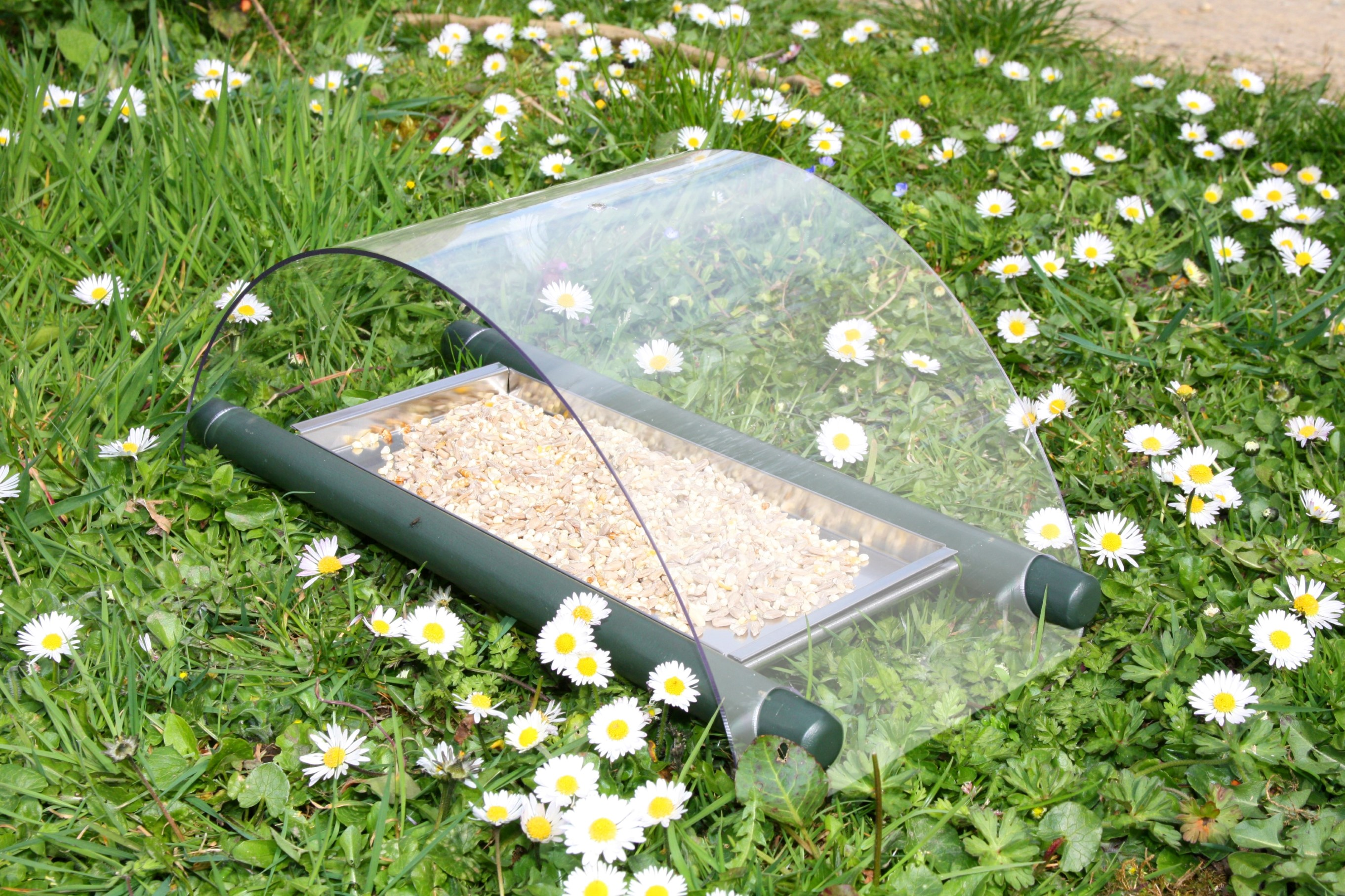 Archway Ground Feeder With Steel Tray