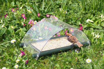 Archway Ground Feeder
