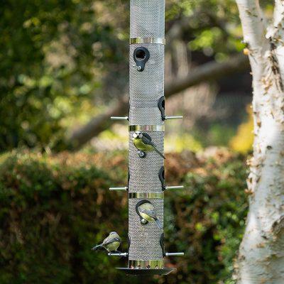 Garden birds on supersize feeder