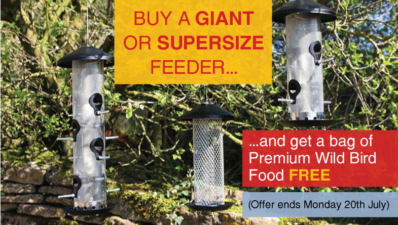metal feeders offer with free seed