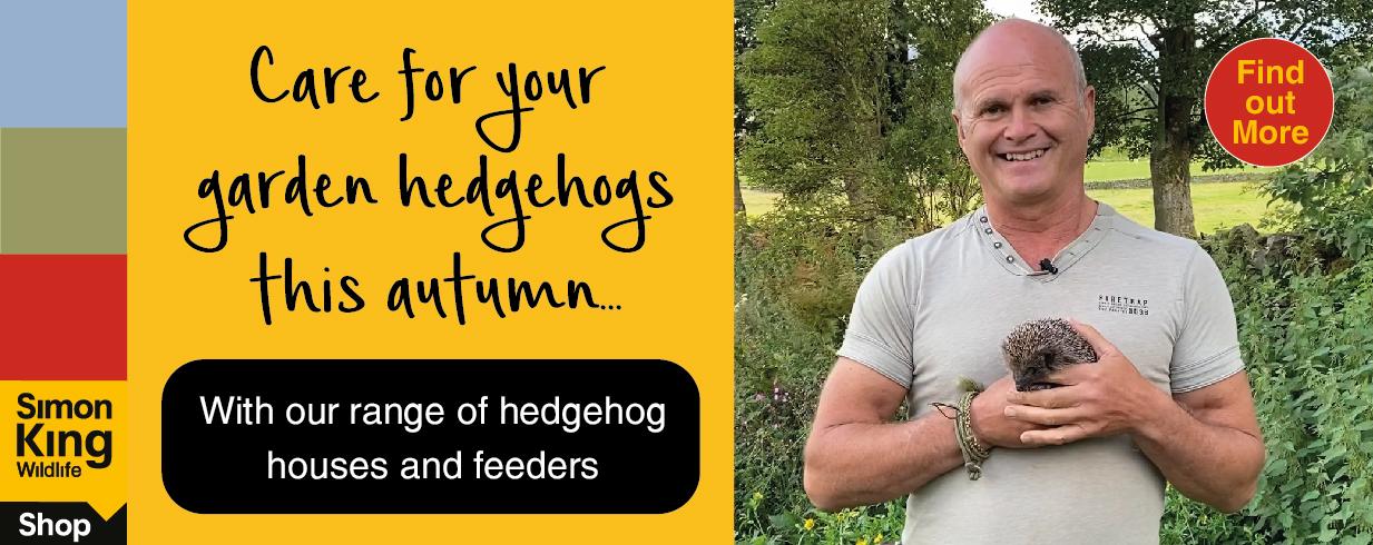 simon king hedgehog products
