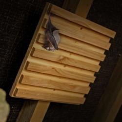 Bat Rack – Hanging Station