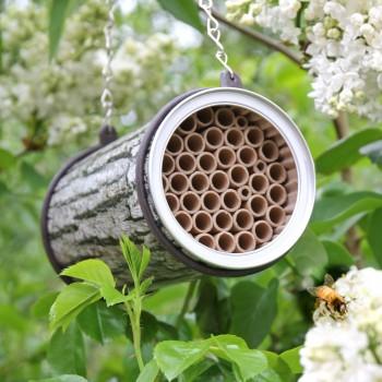 Bee Nester