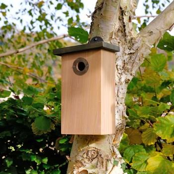 Cat predator proof nest box