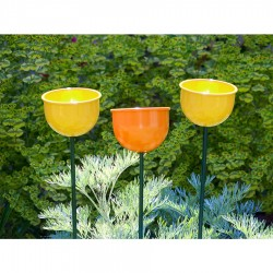 Wild Bird Colour Cup Feeder