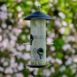 Seed Bird Feeder