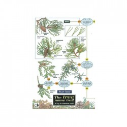 Field Guide – Tree Name Trail