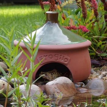 The Frogilo toad habitat