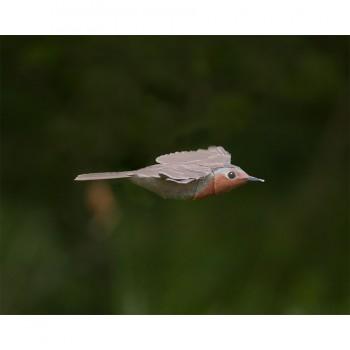 Flying Robin Model