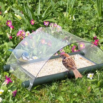 Archway Ground Feeder for ground feeding birds