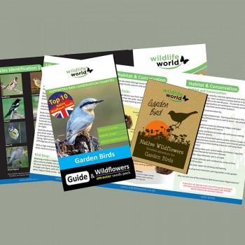 Wildflower seeds for garden birds