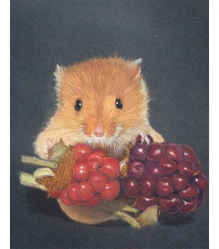 Harvest Mouse With Fruit