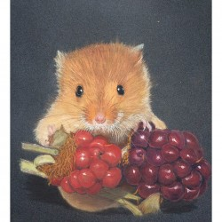 Harvest Mouse With Fruit Pastel Drawing