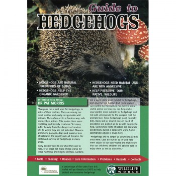 Hedgehogs Field Guide