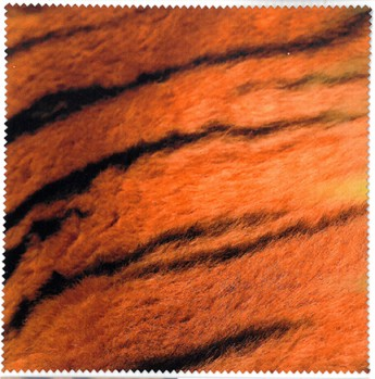 Lens Cloth - Tiger Skin