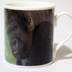 China Mug – Gorilla Front & Back