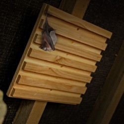 Bat Rack – Hanging Station
