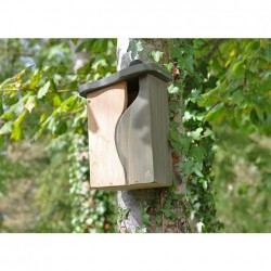 Simon King Curve, Cavity Nest Box + Free wildflowers + Free P&P