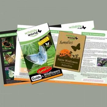 Wild flower seeds for butterflies