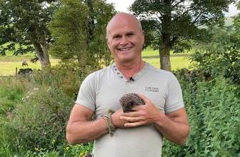 Hedgehog Friendly Gardening