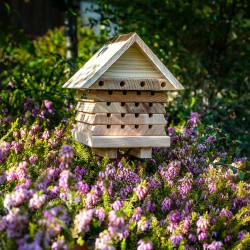 New Interactive Solitary Bee Hive